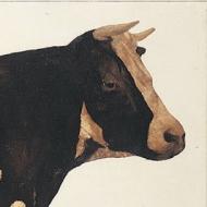 Cow, 1963